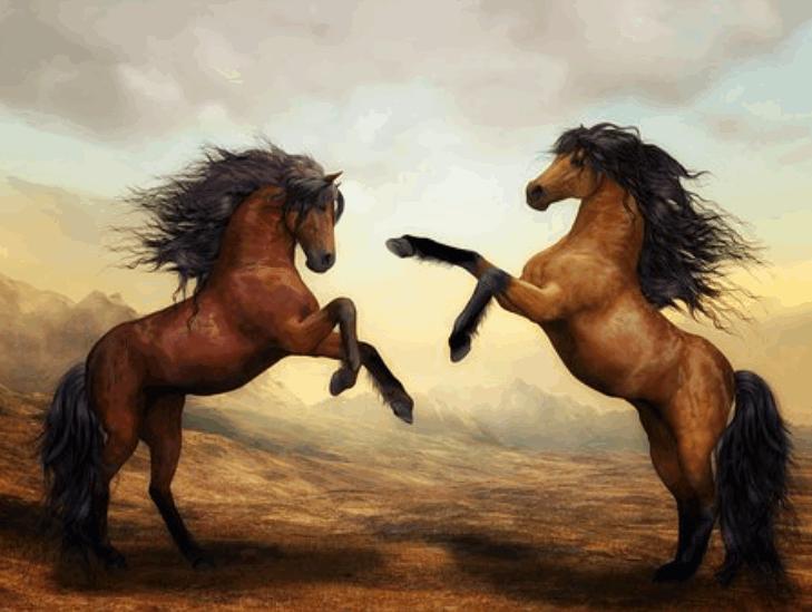 horsebreed6